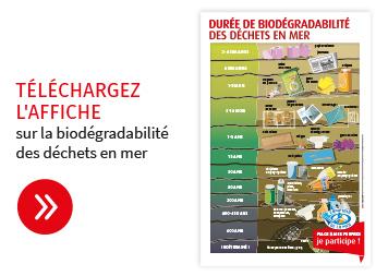 telechargez l'affiche biodegradabilité des déchets en mer